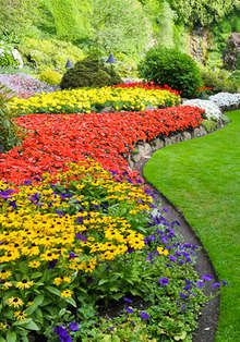 1000 images about gardening on pinterest flower beds for Low maintenance flowers for flower beds