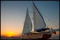 Gulet Tarkan 5, 8 Cabins, 16 Berths. Available for Charter in Greece.