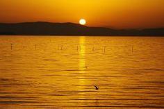 Tuoro sul Trasimeno conferma le 5 vele della Guida Blu di Legambiente e Touring Club che premia le località che riescono ad offrire vacanze da sogno e di qualità, grazie alla gestione sostenibile di un territorio d'eccellenza, alla salvaguardia del paesaggio, ai servizi offerti nel pieno rispetto dell'ambiente e all'enogastronomia di alto livello. Conferme anche per le altre località umbre: Castiglione del Lago, Magione, Passignano sul Trasimeno e a Piediluco ottengono 4 vele.