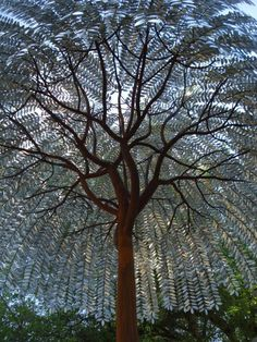 awesome 20 ft. metal tree by artist foster talge/ austin. tx www.travers.com