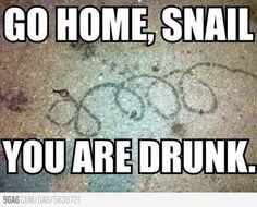 go home snail