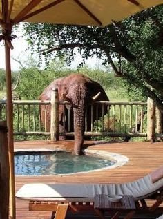 Etali Safari Lodge | Madikwe Game Reserve Accommodation