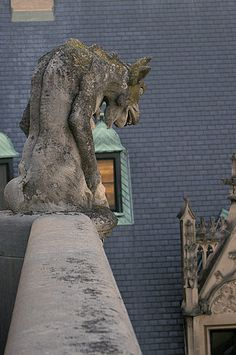 Get a close-up view of the many gargoyles on Biltmore House.
