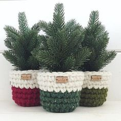 Chunky Planter Sweaters 053 Crochet pattern by Simply Made by Erin Diy Crochet Patterns, Crochet Basket Pattern, Crochet Projects, Knitting Patterns, Crochet Baskets, Crochet Home, Crochet Gifts, Crochet Yarn, Christmas Gifts For Her