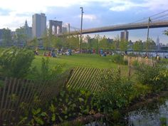 Brooklyn Bridge Park | Credit: Murrye Bernard