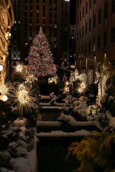 NY, NY during Christmas!!! I have been there, but this time of year would be amazing