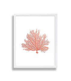 Coral Colored Wall Decor coral wall art prints coral color decor coral prints water color