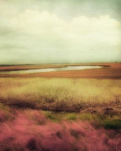 wide open spaces - Google Search