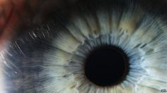 Scientists have developed a new technique to regrow human corneas. Using key tracer molecules, researchers have been able to hunt down elusive cells in the eye capable of regeneration and repair. They transplanted these regenerative stem cells into mice - creating fully functioning corneas.  Writing in the journal Nature, they say this method may one day help restore the sight of victims of burns and chemical injuries.