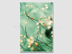 Kunstdruck [Frühlingserwachen] - Fotografie, Natur von Schwesternkunst auf DaWanda.com
