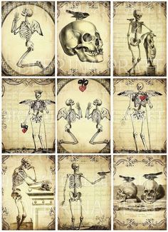 SKeLeToNs and BLaCK BiRDs vintage paper original digital collage sheet scrapbooking supplies printab Retro Halloween, Halloween Labels, Fall Halloween, Halloween Crafts, Halloween Decorations, Memento Mori, Funny Bird, Artist Trading Cards, Collage Sheet