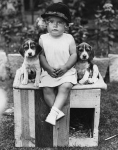 Beagle Puppy from 8 weeks to 8 months : Cute Dog Louie Vintage Children Photos, Images Vintage, Vintage Dog, Vintage Pictures, Antique Photos, Vintage Photographs, Animals For Kids, Baby Animals, Tier Fotos