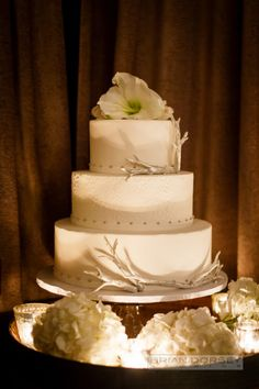 Wintery cake: http://www.stylemepretty.com/new-york-weddings/new-york-city/brooklyn/2015/04/14/rustic-winter-wedding-at-brooklyn-winery/   Photography: Brian Dorsey - http://briandorseystudios.com/