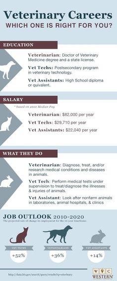 Shock An Overview \u2013 Today\u0027s Veterinary Technician Vet Tech