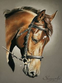 baloo by skyzune art equine and animal artist painting and pastel portrait of a pastel horse order horse portrait in pastel art artist pastel horse horse portrait skyzun Horse Drawings, Realistic Drawings, Animal Drawings, Arte Equina, Horse Artwork, Pastel Portraits, Horse Portrait, Pastel Art, Equine Art