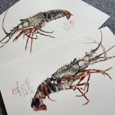 "Ch'ng Kiah Kiean on Instagram: ""Lobster study.  #kiahkiean"" Urban Sketchers, Watercolor Sketch, Flora, Sketches, Study, Ink, Animals, Instagram, Dibujo"