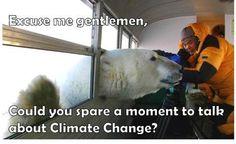Climate change. Polar bear. Funny Canadian.