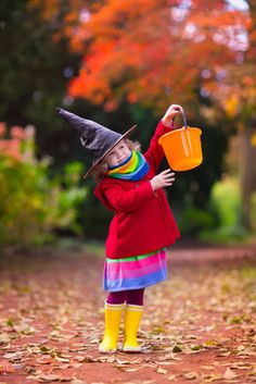 #TrickOrTreat with your children this #Halloween at #StockfieldPark! A short drive away, enjoy some Halloween fun. Open daily Oct 21st onwards! http://bit.ly/1xvrnSD