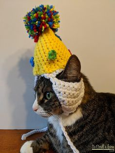 Birthday Cat Hat-Cat Hats-Hats for Cats-Party Cat Hat-Cat