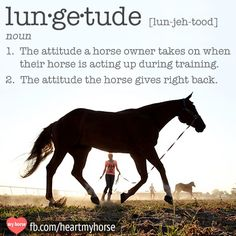 Anyone who's ever gone toe-to-toe with an ornery horse in the round pen knows EXACTLY what this means. Like it? We also put it on a shirt, available in our boutique shop: http://hrtmyhr.se/lungetude