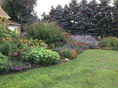 Sally's traffic-stopping front garden in Maryland | Fine Gardening