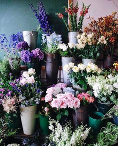 Die 14 Besten Bilder Zu Bauholz Floristik Einrichtung