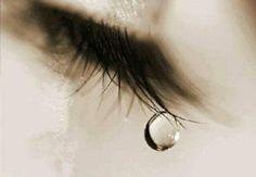 HÜLYACA YORUMLAR: Bir Acıdır Ergenekon Aslında...