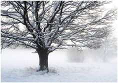 Snow Days by Valerie on Etsy