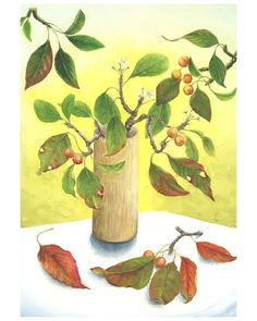 Leaves arrangement print from original watercolor painting.  Available sizes. (With white boarders)  5x7 8x10 11x14 13x19  Prints are on Velvet Fine Art Paper with UltraChrome pigment inks. Its a slightly rough matte surface thats a similar feel to water color paper.  Signed and dated on the back. Unframed.  Ships flat in a clear sleeve with a cardboard backer and rigid mailer for a safe journey.  Thanks for looking
