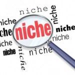 How to Brainstorm for Niche Ideas: Niche Site Project 2, Coaching Call 1!