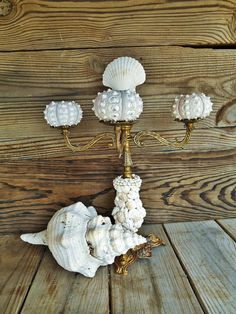 Sea Shell Candelabra. Recycled. Sanibel Shells. by searchnrescue2, $52.00