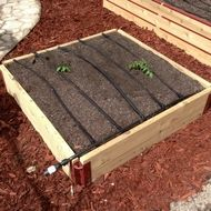 Raised garden bed starter kit. $51.50, comes with everything you need to get started and very durable