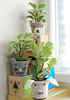 Free knitting pattern for Animal Plant Cozies - cat, bear, bunny. Great for gifts or nursery or child's room.  tba
