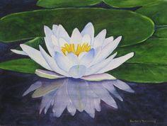 White Water Lily Barbara Rosenzweig Flower by BarbaraRosenzweig, $48.00