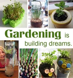 Insane amount of ideas for gardening with kids.  The freak in me wants to do all of these...tomorrow!