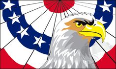 Flag of the Day  Patriot Eagle Flag from A1 Flags & Poles #FlagoftheDay, #rvflags http://www.a1flagsnpoles.com/patriot-eagle-flag