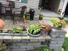 Used vintage Tupperware containers as planters