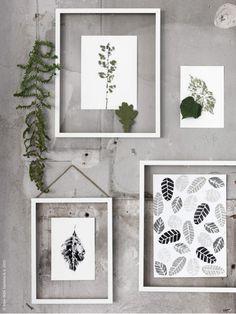 Bladgroen aan de muur in fotolijstjes, frame in frame maakt het heel luchtig en maakt de achtermuur ook interessant