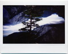 Taken with the Lomo'Instant Wide and Splitzer