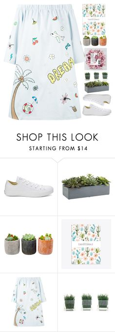 """17:51"" by unadores ❤ liked on Polyvore featuring Converse, Crate and Barrel, Shop Succulents and Mira Mikati"