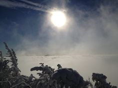 Whiteface above the clouds