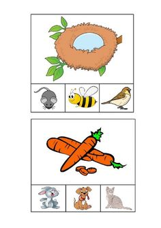 Phonics Activities, Preschool Worksheets, Preschool Activities, Cat Coloring Page, Free Preschool, School Subjects, English Words, Google Classroom, Kids Education