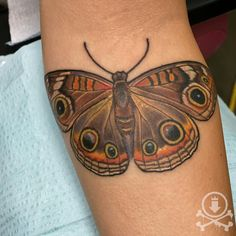 Buckeye butterfly cover up tattoo by Meghan Patrick. #12ozstudios #team12oz #tattoo #tattoos #tattooed #tattooing #tattooism #tattooart #tattooartist #tattooer #tattooist #art #artstudio #tattooshop #tattoostudio #ink #inked #colortattoo #colortattoos #coverup #coverups #coveruptattoo #coveruptattoos #buckeye #buckeyebutterfly #butterflytattoo #butterflytattoos #butterflies #nature #animal #animaltattoos