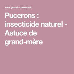 Pucerons : insecticide naturel - Astuce de grand-mère