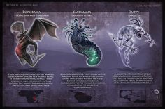 Monsters with their descriptions Myths & Monsters, Monster Book Of Monsters, Cool Monsters, Sea Monsters, Monster Art, Wild Creatures, Fantasy Creatures, Mythical Creatures, African Mythology