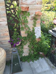 rosenpavillon und ruine im garten my garden pinterest g rten. Black Bedroom Furniture Sets. Home Design Ideas