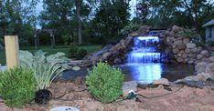 How To Build A Pond - Backyard Water Garden Pond Plants, Aquatic Plants, Ponds Backyard, Koi Ponds, Backyard Landscaping, Garden Pond Design, Garden Arbor, Rockery Garden, Building A Pond