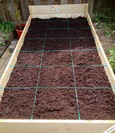 Hochbeet Flora, Stepping Stones, Outdoor Decor, Urban Gardening, Home Decor, Eco Garden, Companion Planting, Planting, Plants