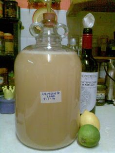Ben's Adventures in Wine Making: Lemon & Lime Wine - The Making Of ...