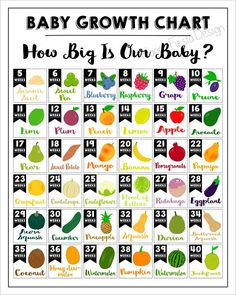 PRINTABLE How big the baby is Printable baby growth chart-Week per week-Comparison of the baby with the fruit-Baby size sign-Baby size chart-Baby bump - Pregnancy Pregnancy Chart, Pregnancy Stages, Pregnancy Tips, Pregnancy Growth Chart, Pregnancy Trimester Chart, Pregnancy Countdown, Pregnancy Calendar, Pregnancy Journal, Second Pregnancy